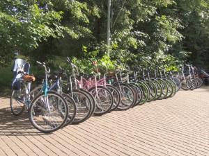 Жители столицы стали пользоваться велопрокатом в три раза чаще