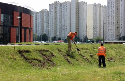 Новая клумба возле метро Алма-Атинская