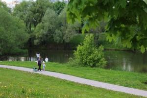 Пойма реки Городни