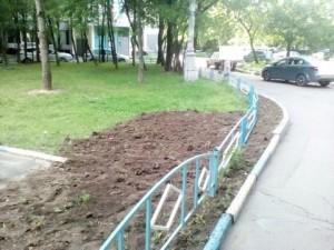 Благоустроенный газон на Паромной улице