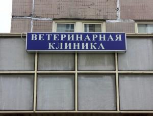 Ветеринарная клиника в районе Братеево