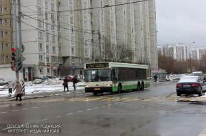 Автобус в районе Браетеево
