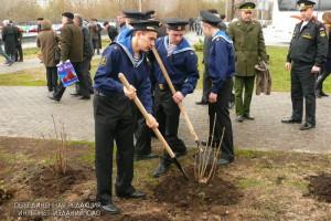 В районе Братеево высадят 465 новых кустарников