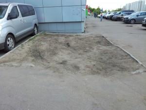 До обновления газона