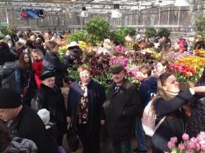 Жители Братеева посетили выставку в Аптекарском огороде