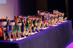 Церемония награждения победителей и призеров ДЮФЛ