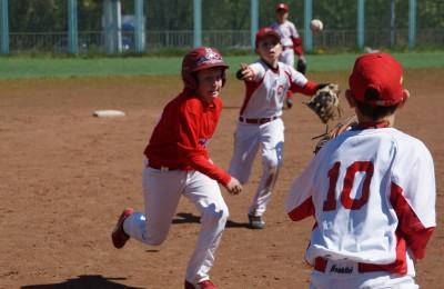 Бейсбол в районе Братеево