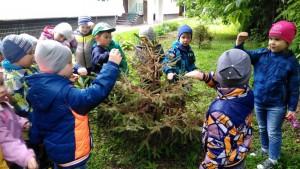 Дошкольники стали участниками экологического праздника