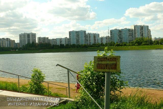 Парк в Братеевской пойме